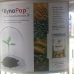 KynoPop 2