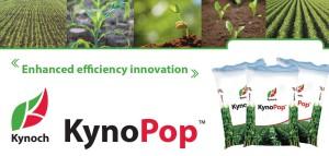 KynoPop